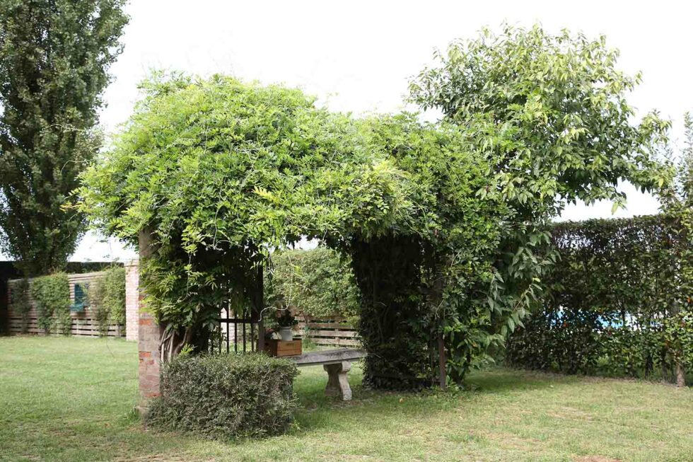 location1_boscomardigliana